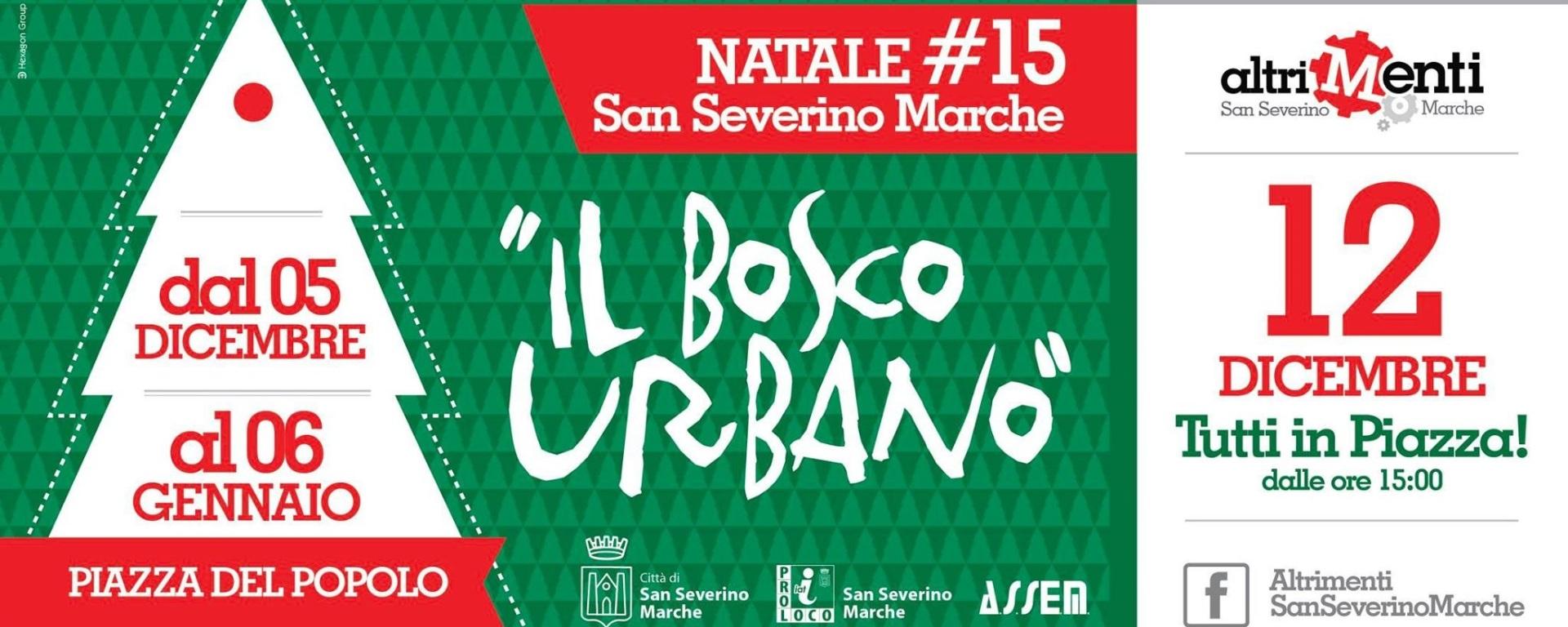 promo code d4257 76f92 Natale2015: un bosco urbano in piazza Del Popolo con ...